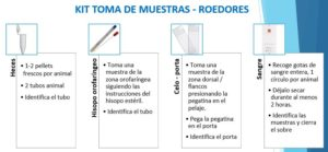 Kit toma de muestras roedores